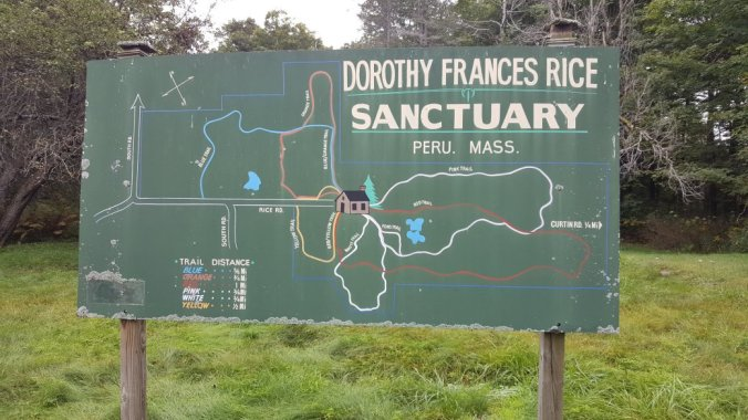 Peru Dorothy Frances Rice Sanctuary Color